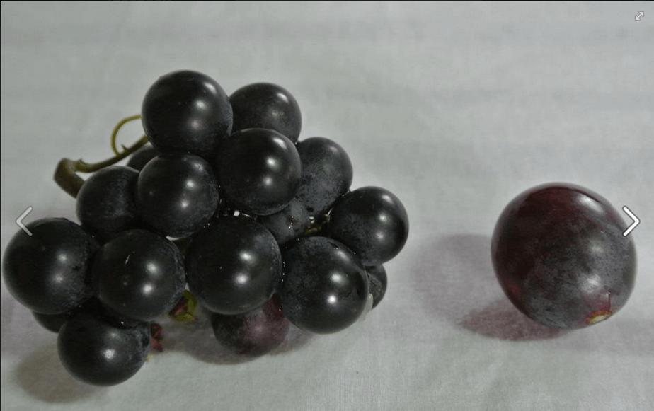 黃彰琦 真香葡萄 (2)