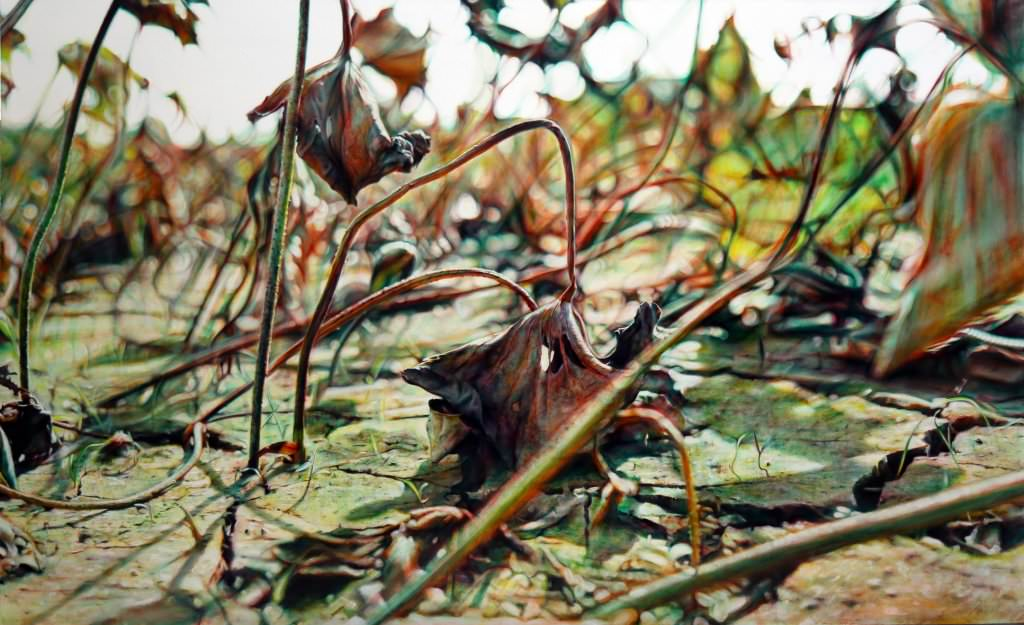 -黃敏俊- 殘荷入夢 -布面油畫-160 x 260 cm|2015(秋刀魚藝術中心)%2F Mingchun HUANG-The Emaciated Lotus Dream.-Oil painting on canvas|160 x 260 cm|2015(FISH ART CENTER).jpg